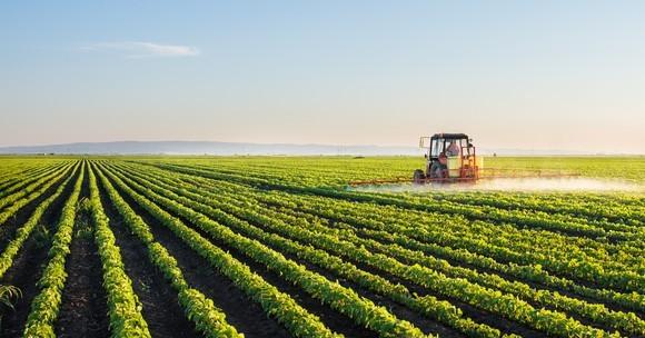 Договор за наем на земеделска земя - може ли да се разгледа като рамков договор